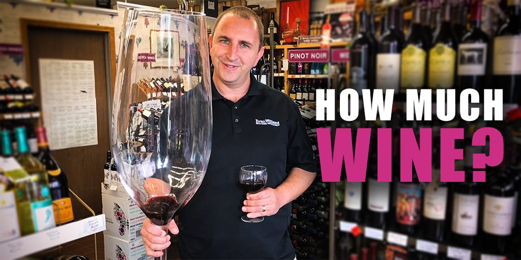 How Much Wine In a Bottle? And How Much Wine Do You Need For a Party?